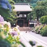 正願寺の参道