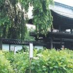 正願寺の山門