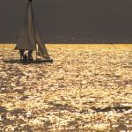 諏訪湖のヨット