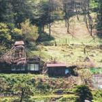覗石の廃屋