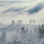 霧ヶ峰の1月