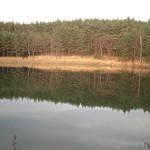 農場下ため池(原村)