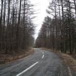 高原の道(富士見町)